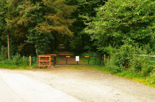 http://cdn.thejournal.ie/media/2014/09/drum-manor-forest1-630x415.jpg