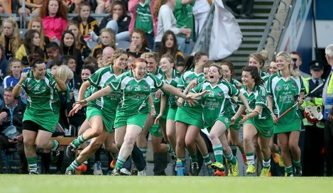 Limerick players celebrate at the final whistle