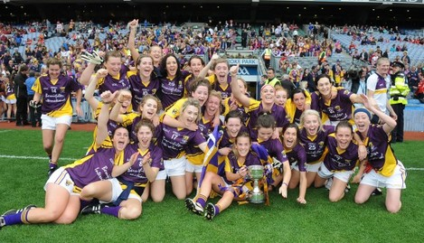 The Wexford team celebrate with the cup