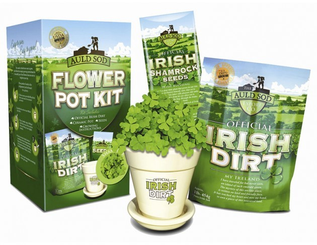 irish-dirt-shamrock-growing-kit-xl