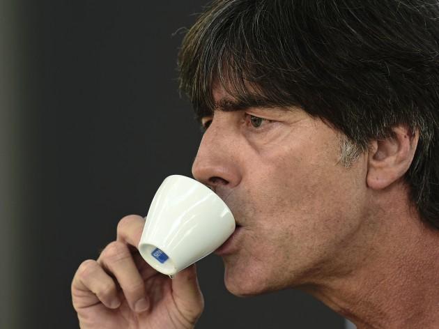Germany Ireland Euro Soccer