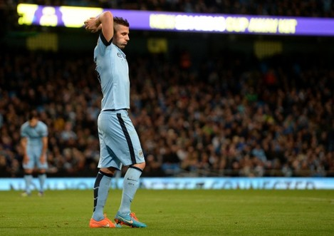 Soccer - Capital One Cup - Fourth Round - Manchester City v Newcastle United - Etihad Stadium