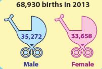 cso statistics births
