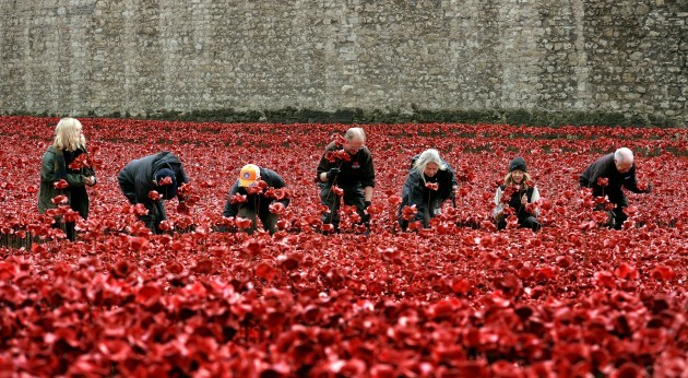 Blood Swept Lands and Seas of Red installation