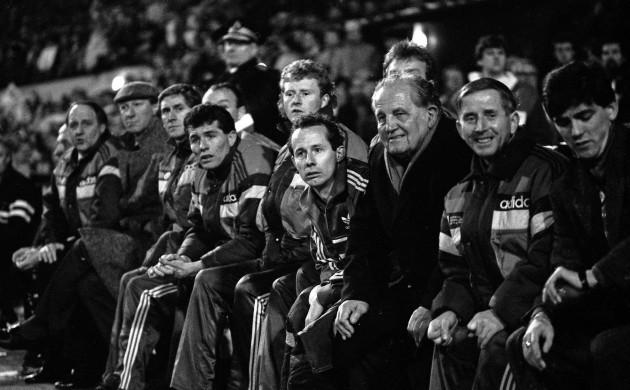 Liam Bray and the Ireland bench watch the game