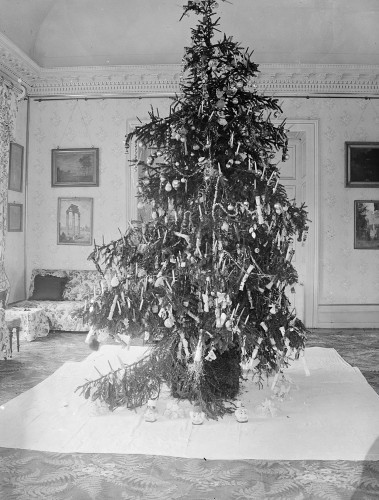 christmas tree decorated with lights baubles and crackers taken around 1900 in galway - Rural King Christmas Decorations