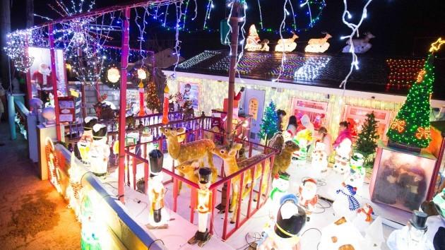 DK30112014 Christmas Lights 009 (1)