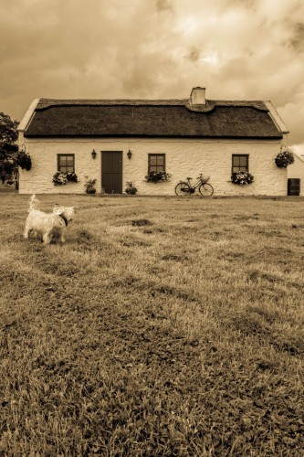 Runner Up of the Youth Category in the 2014 National Heritage Week Photo Competition was Alice Corley from Mayo  with her image 'Old Cottage'