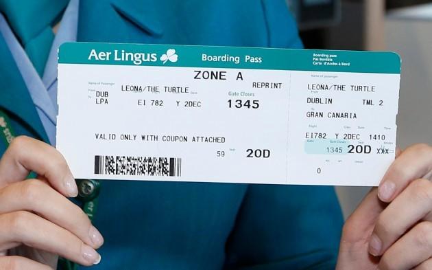 Aer Lingus Turtle 4