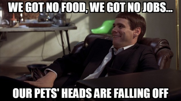 9 Dumb and Dumber quotes not to live your life by · The ...