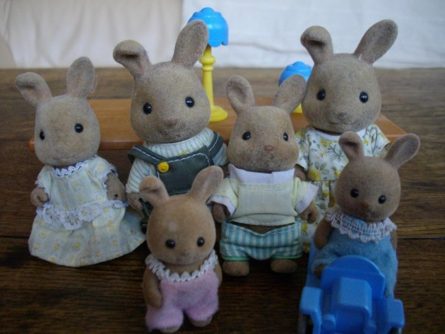 Brown rabbits family
