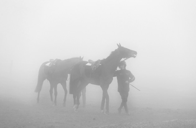 Horses out on the Cheltenham gallops on a foggy morning 19/122014