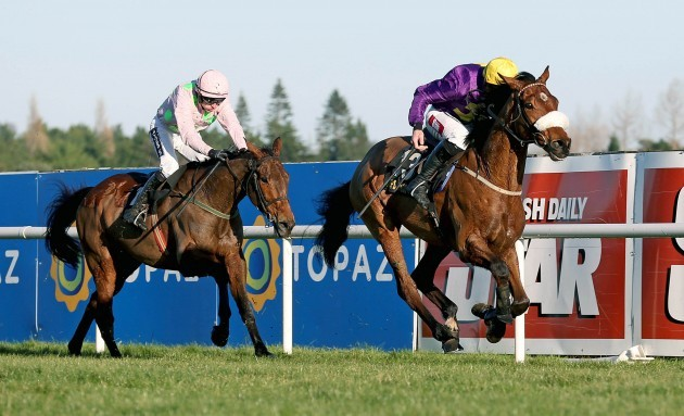 Windsor Park ridden by Davy Russell comes home to win