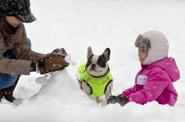 Romania Weather Snow