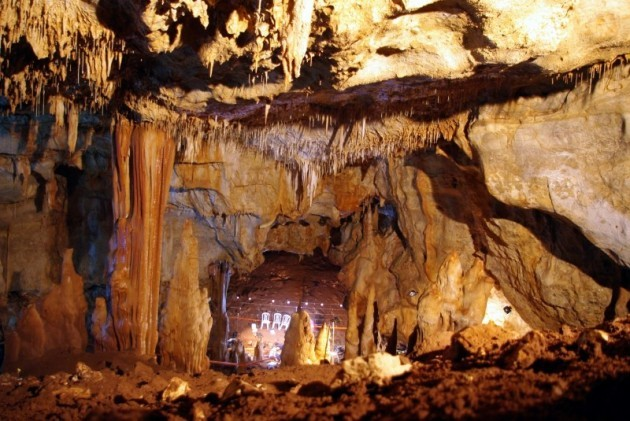 manot cave science daily