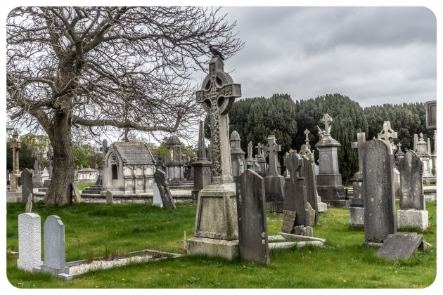 Glasnevin_Cemetery_is_the_final_resting_place_for_over_1.1_million_people_(6905918072)