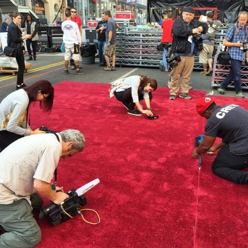 The red carpet is being laid out and the stapler man is suddenly the most popular person on Hollywood Blvd. #oscars #redcarpet #hollywood