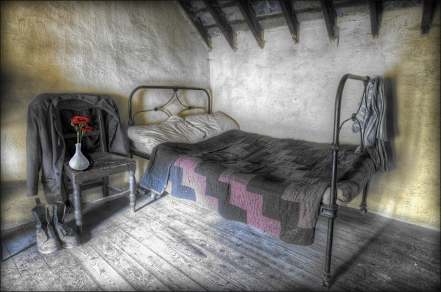 Thomas Gray - Red rose old house - Dundalk Photographic Society - Colour Print Theme - Advanced First