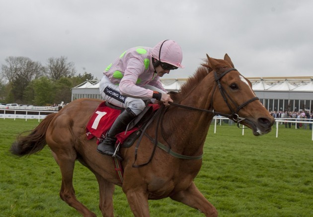 Horse Racing - Punchestown Festival - AES Festival Family Day - Punchestown Racecourse