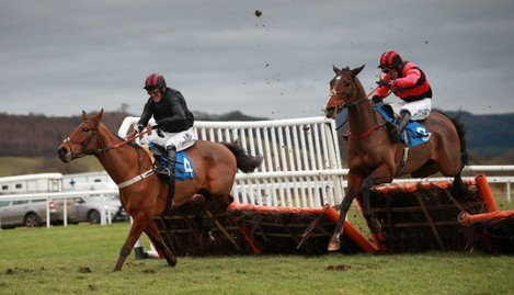 Horse Racing - 2015 Cheltenham Festival Package