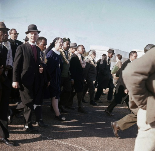 Selma 50th Photo Package