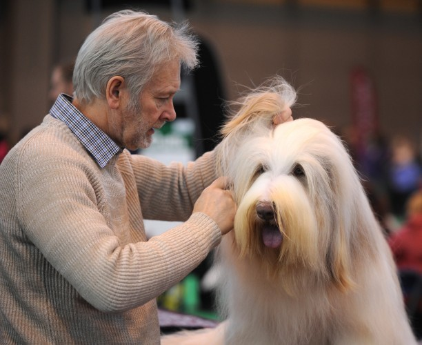 Britain Crufts Dog Show