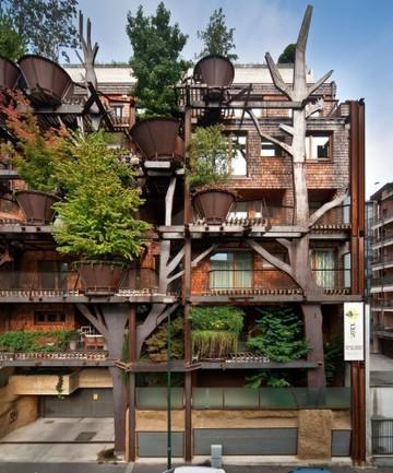 treehouse - 1