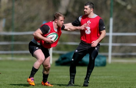 Luke Fitzgerald and Rob Kearney