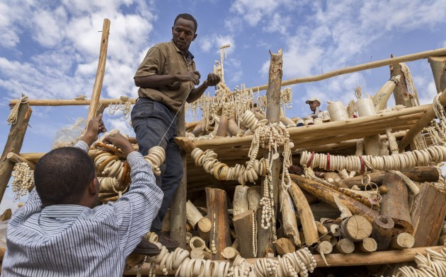 Ethiopia Ivory Burnt