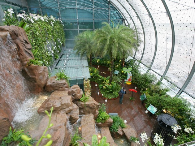 theres-even-an-enclosed-butterfly-garden--the-first-such-garden-in-an-airport--which-is-home-to-butterflies-flowers-lush-greenery-and-a-6-meter-20-ft-waterfall