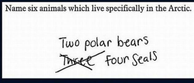 Unusual Exam Answers. Part 2 (23 pics)