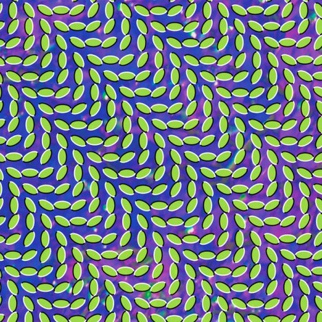 animal_collective_cover