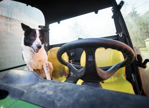Drivers dogged by M-way tailbacks