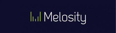 melosity_logo_b