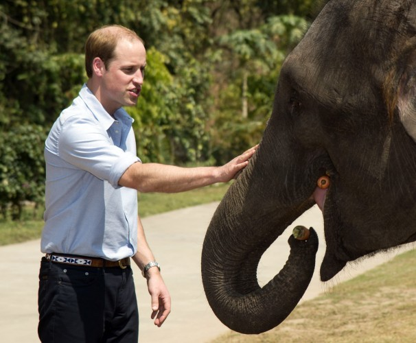 The Duke of Cambridge visit to China - Day 4