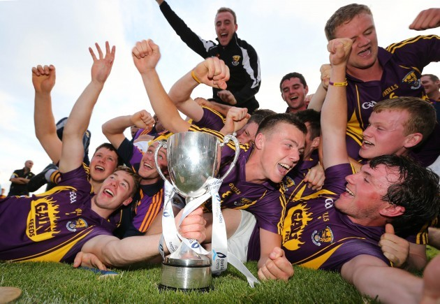 Wexford players celebrate with the cup