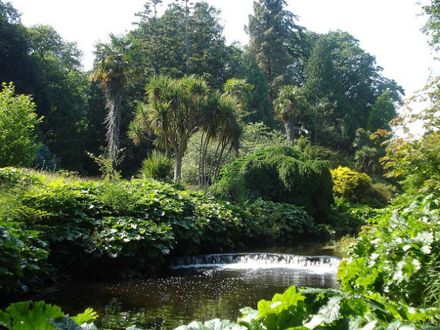 Mount Usher Gardens, Wicklow, Ireland