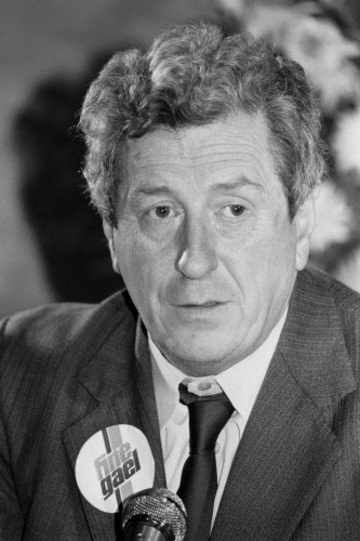 Politics - Irish General Election 1981 - Dublin