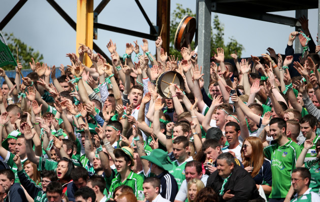Limerick supporters in the terrace