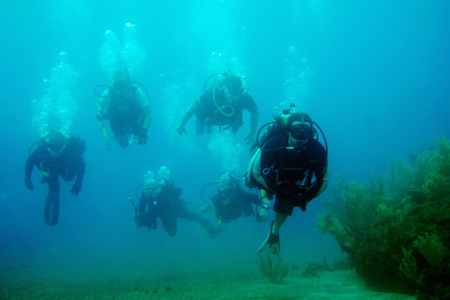 Wounded warriors learn open water diving.