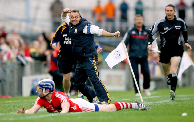 Davy Fitzgerald celebrates after his side wins a free