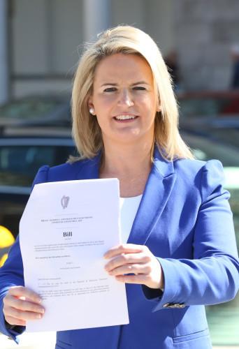 Lorraine Higgins Anti Cyberbullying Bills