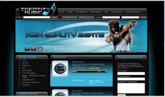 Z305-15musicwebsite