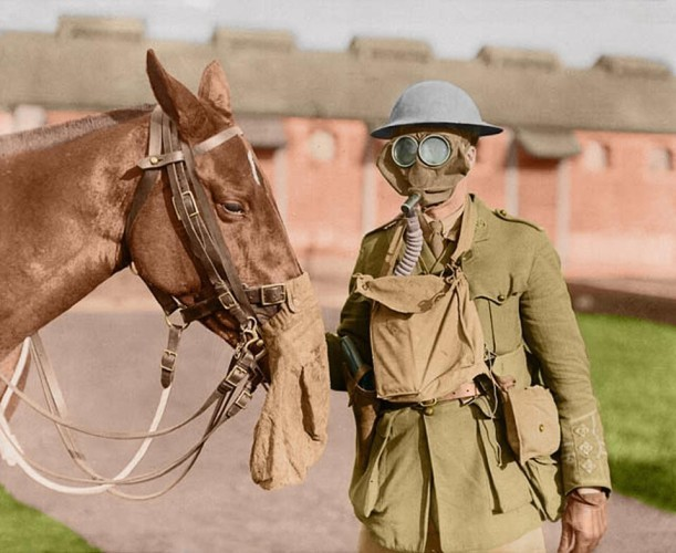 trenches-provided-no-protection-against-the-deployment-of-chemical-weapons-here-a-canadian-soldier-poses-with-his-horse-while-wearing-a-gas-mask-at-the-canadian-army-veterinary-corps-headquarters
