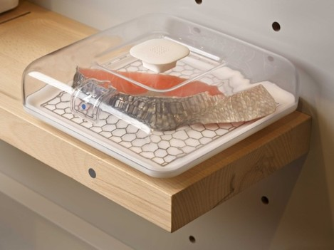 this-piece-of-fish-is-placed-inside-a-container-labeled-2-degrees-celsius-the-shelf-will-keep-it-at-that-temperature-until-youre-ready-to-use-it