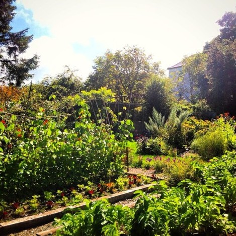 I would be very happy with this as my kitchen garden! at the lovely #glebegardens #baltimore #westcork #moredeliciousfood