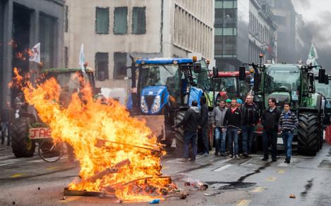 Belgium Farmers Demonstration
