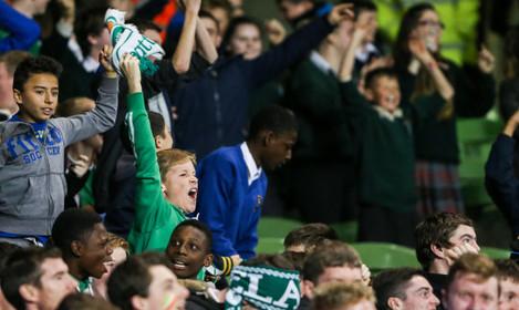 A young Ireland fan celebrates their goal