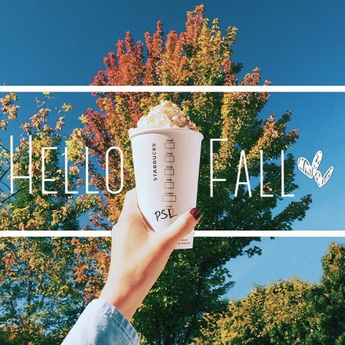 The leaves aren't changing. They're blushing with happiness. The #PumpkinSpiceLatte is back. #PSLisBACK