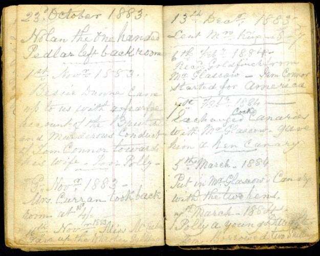 Extract from family diary recording neighbourhood events, 23 October 1883